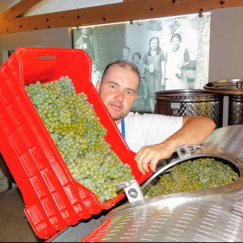 Michael Oberpertinger vom Weingut Spitalerhof an der Weinpresse - Club Winery