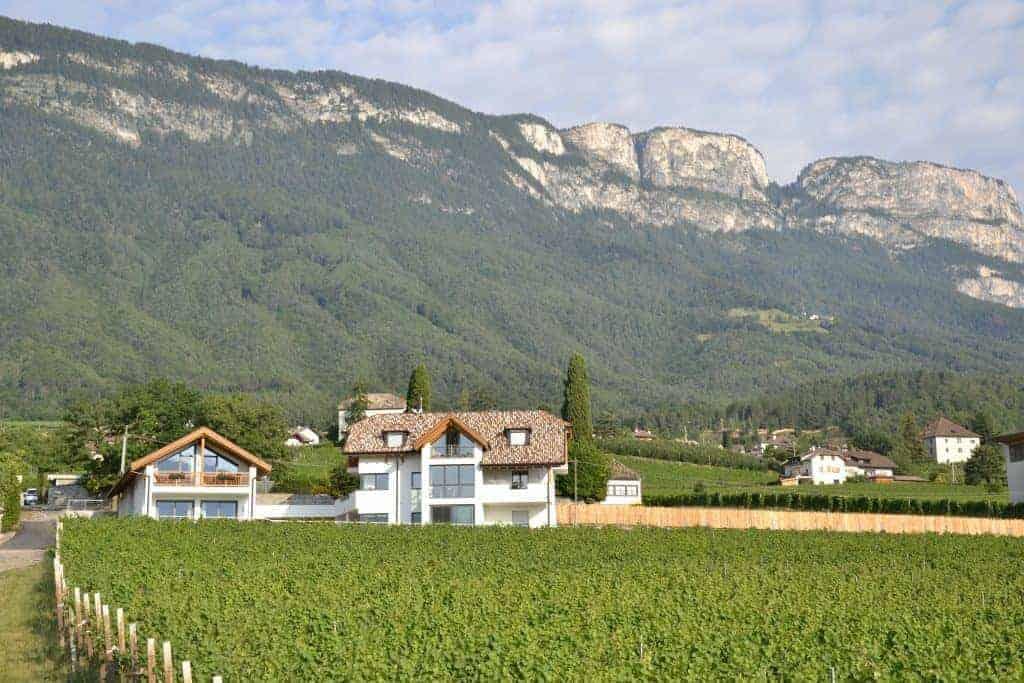 Ferien in den Bergen in Südtirol direkt am Weinberg - Oberberghof