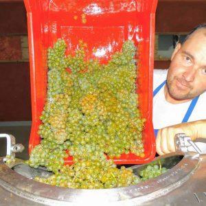 Michael Oberpertiger vom Spitalerhof bei der Presse des Weines - Weinverkostung Club Winery