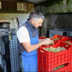 Norbert Blasbichler vom Radoar bei der Weinpresse - Club Winery