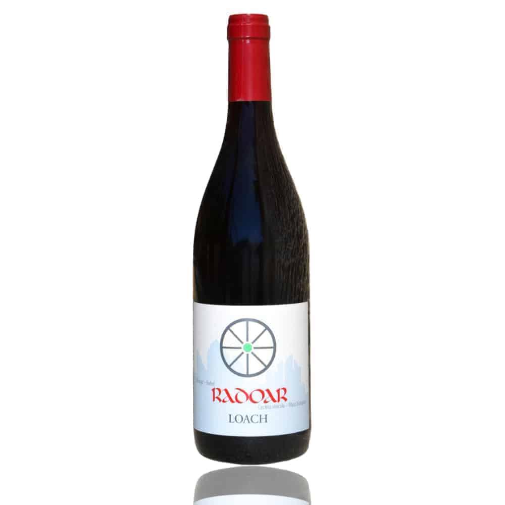 Rebstock adoptieren Radoar Loach - Club Winery Südtirol