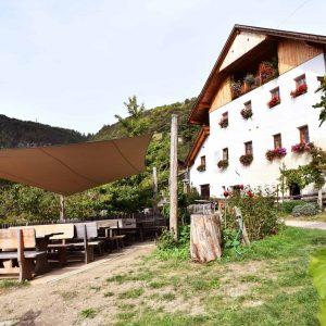 Rielingerhof - Bio-Wein, Buschenschank und Ferienwohnungen - Club Winery