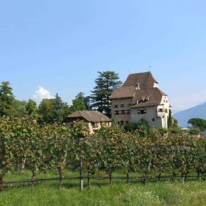 Hotel Schloss Englar - Weingut mieten für Hochzeit und Events