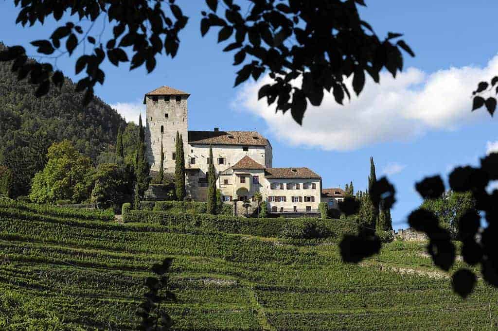 Schloss Tirol bei Meran mit Weinberge
