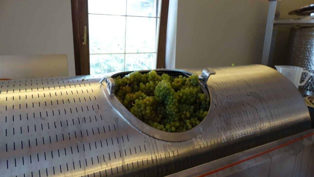Seien Sie bei der Weinpresse dabei mit Spitalerhof und Club Winery Südtirol - Weingeschenk
