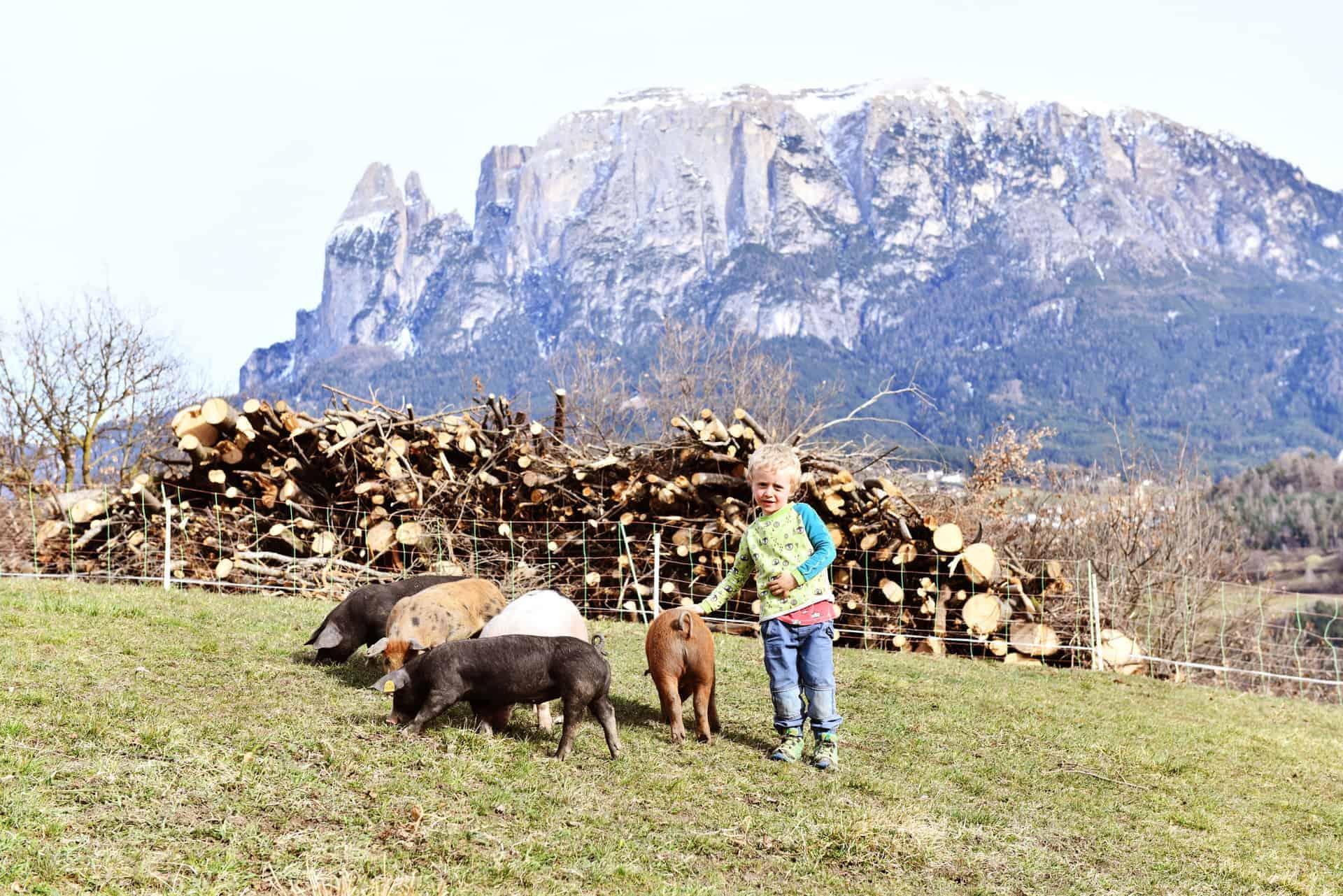 Ein Urlaubsparadies für Kinder mit Sicht zum Schlern - Rielingerhof - Südtirol - Club Winery