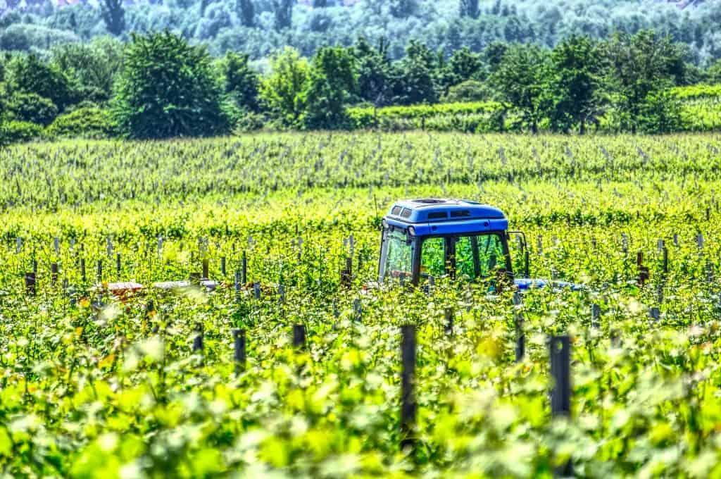 Traktor im Weinberg - Winzerkurs Club Winery