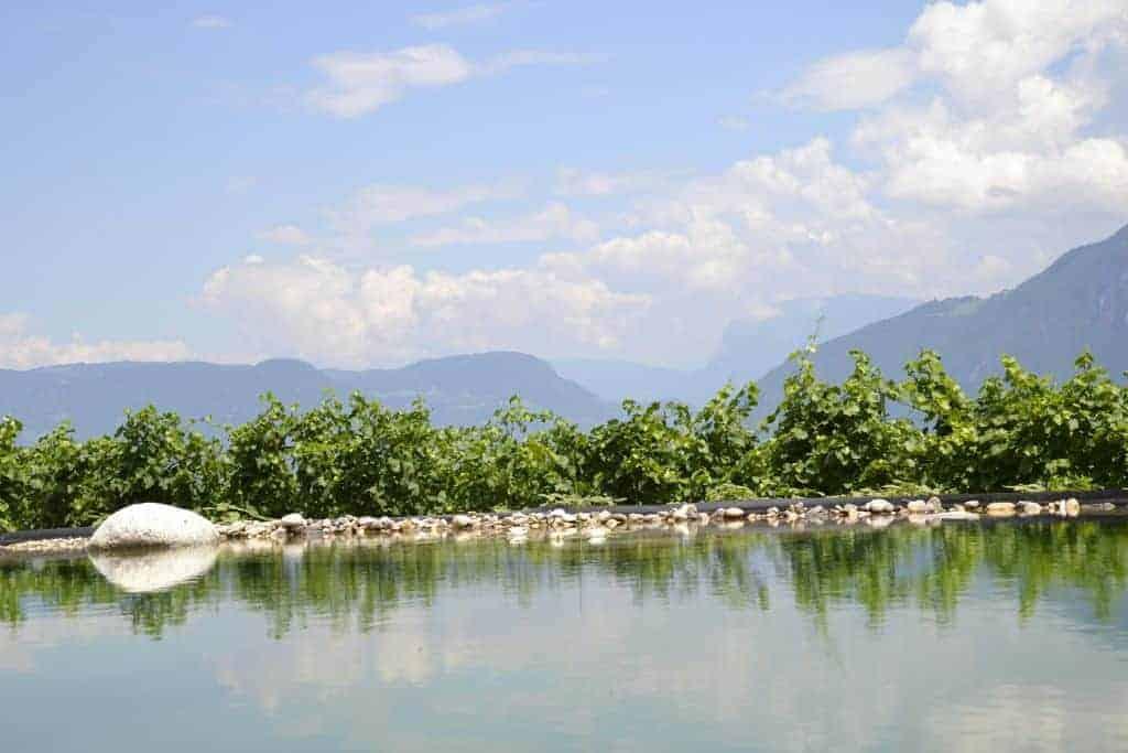 Urlaub mit Naturteich in Südtirol - Oberberghof
