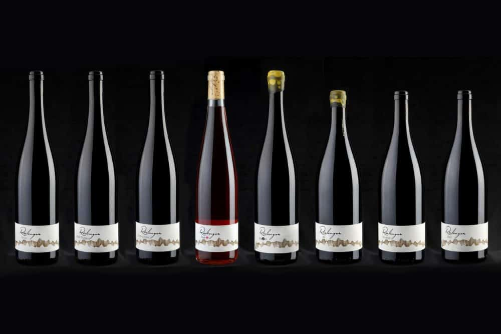 Die Bio-Weine von Rielingerhof - Südtirol - Club Winery