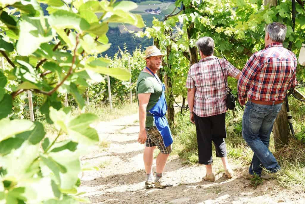 Weingutsbegehung mit Weinverkostung am Rielingerhof - Club Winery