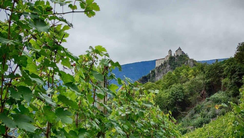 Weingut Spitalerhof in Südtirol mit Aussicht auf Kloster Säben - Club Winery