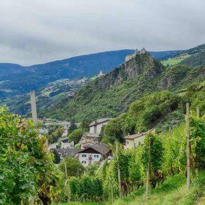 Weingut besichtigen mit Club Winery Südtirol - Spitalerhof in Klausen