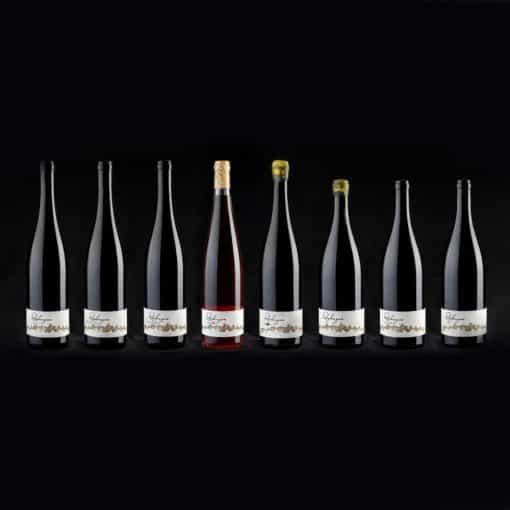 Weinpatenschaft Club Winery Südtirol - Weinflaschen Rielingerhof Südtirol