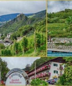 Weinpatenschaft Spitalerhof - Club Winery Südtirol