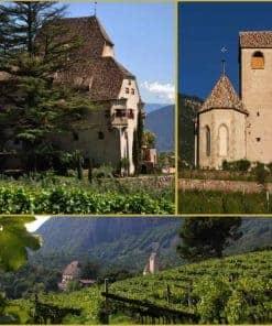 Weinpatenschaft mit Club Winery - Weingut Schloss Englar
