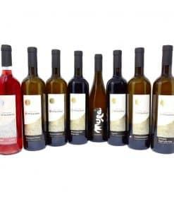 Weinstock mieten - Weinflaschen Spitalerhof - Club Winery Südtirol