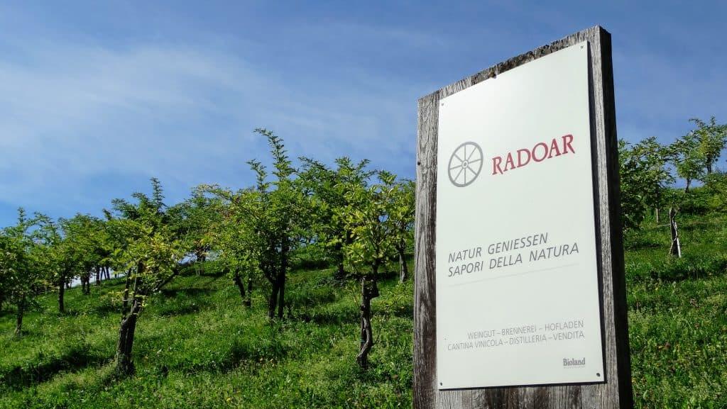 Willkommen am Bio-Weingut Radoar - mieten Sie hier Rebstöcke in Südtirol - Club Winery