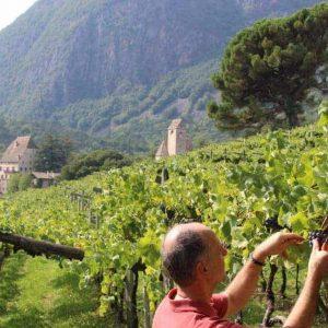 Weinverkostung & Weinführung Schloss Englar in Südtirol