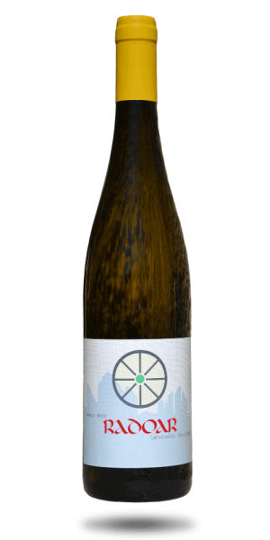 Müller Thurgau Radoar - Südtirol Rebstockpatenschaft Club Winery
