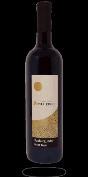 Pinot Noir Blauburgunder Spitalerhof - Club Winery Südtirol Rebstockpatenschaft